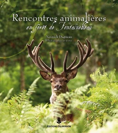 Rencontres animalières en forêt de Fontainebleau