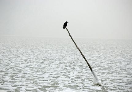 Volendam, 2008 - de la série Apnée